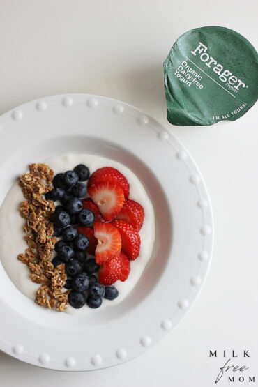 Forager Dairy Free Yogurt Breakfast Bowl